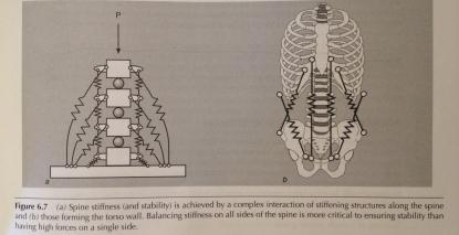 Low back stiffness
